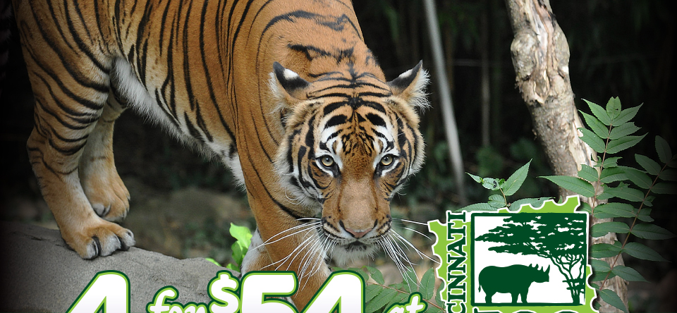 4 for $54 at Cincinnate Zoo & Botanical Garden
